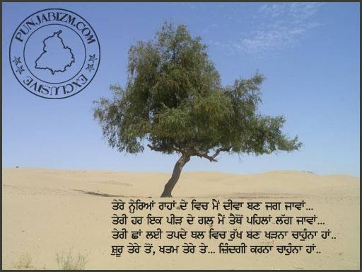 teri chhaaN layi tapde thall...