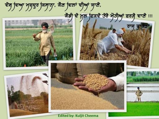 Punjabi Kisan